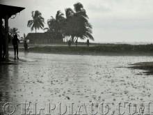 Isla Tigre during the rainy season